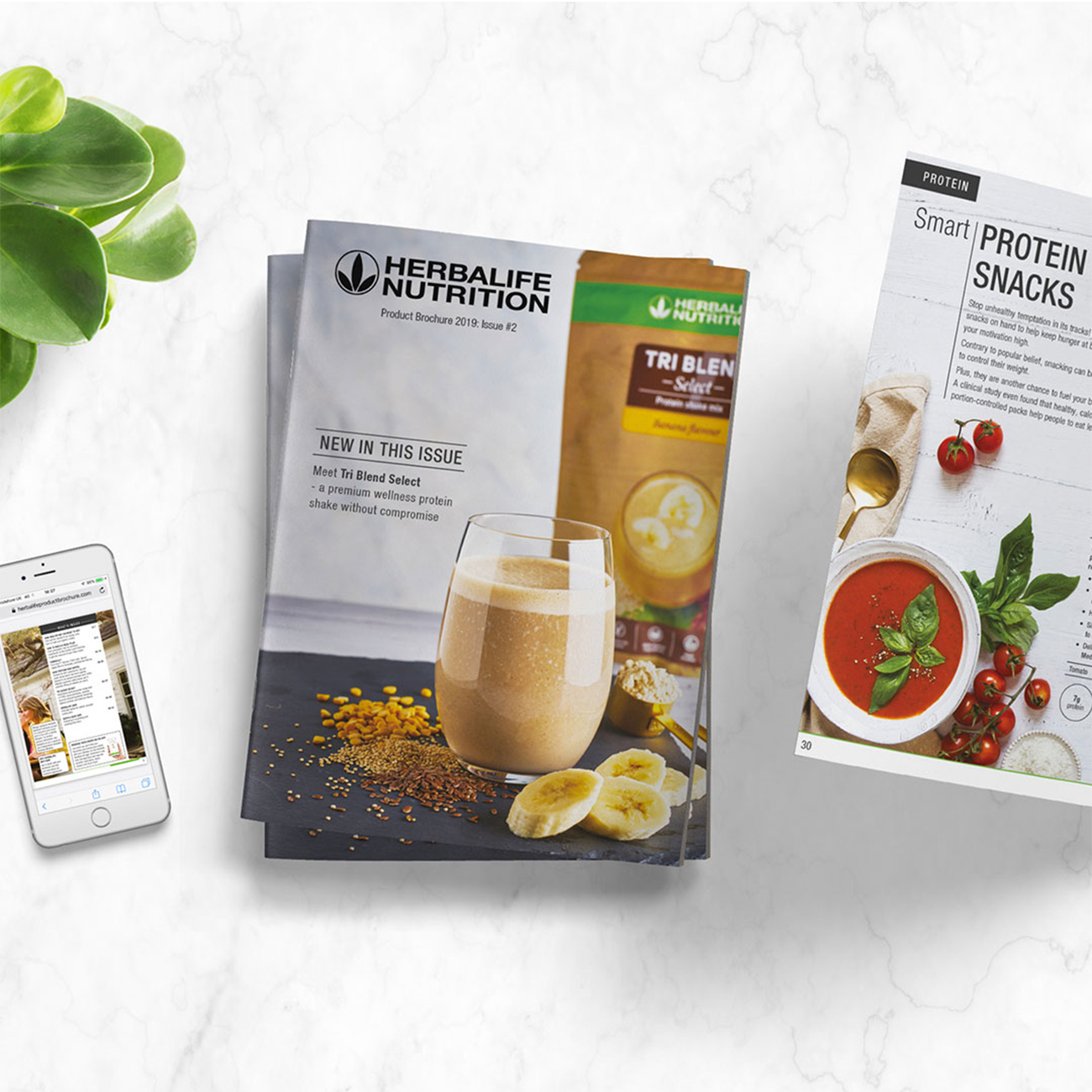 herbalife nutrition product brochure cover and protein snack recipe page on white table
